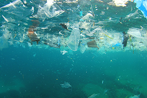 Plastic pollution floating on the ocean surface