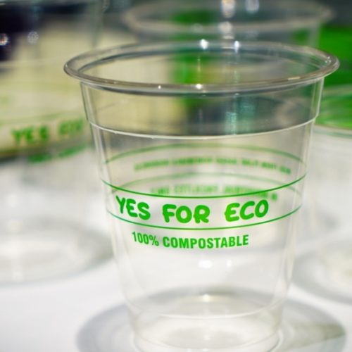 Plant-based bioplastic cup